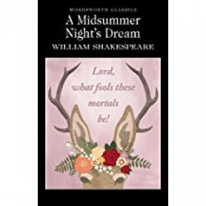 MIDSUMMER NIGHT'S DREAM |