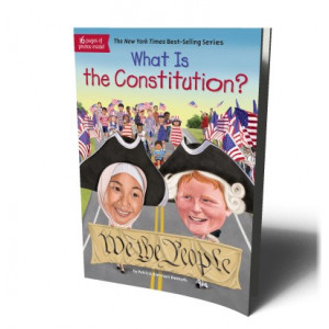 WHAT IS THE CONSTITUTION? | DEMUTH, PATRICIA BRENNAN