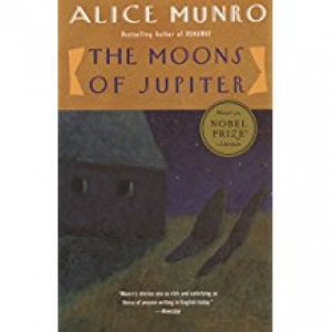 MOONS OF JUPITER | MUNRO, ALICE